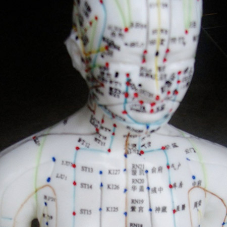 Applied Anatomy For The Health Practitioner Using Acupuncture